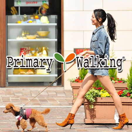 Primary Walking